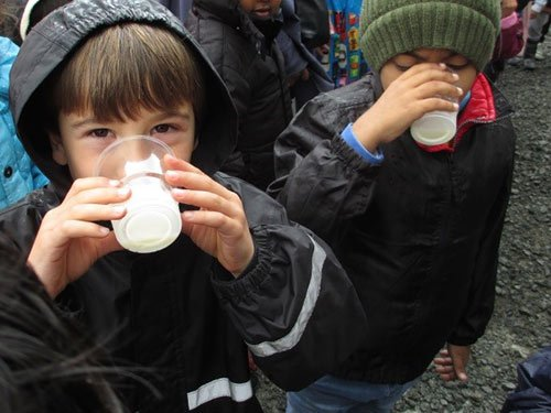 Nice one: Dairy delivers better way of life for all Kiwis