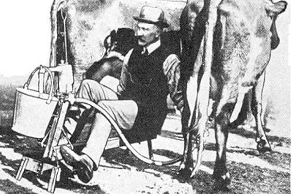 Early milking machines were considered by some to be more trouble than they were worth.