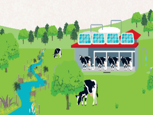 Dairy workplaces of the future